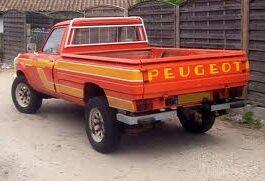 Peugeot Dangel 504