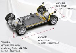 Audi e Porsche piattaforma DPI